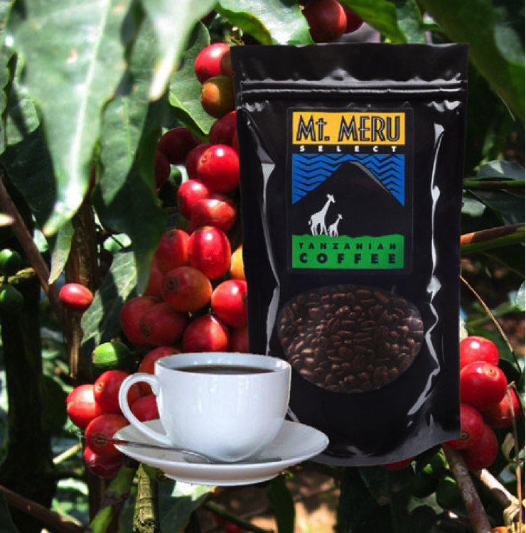 Mt. Meru Coffee Project: Social & Economic Justice